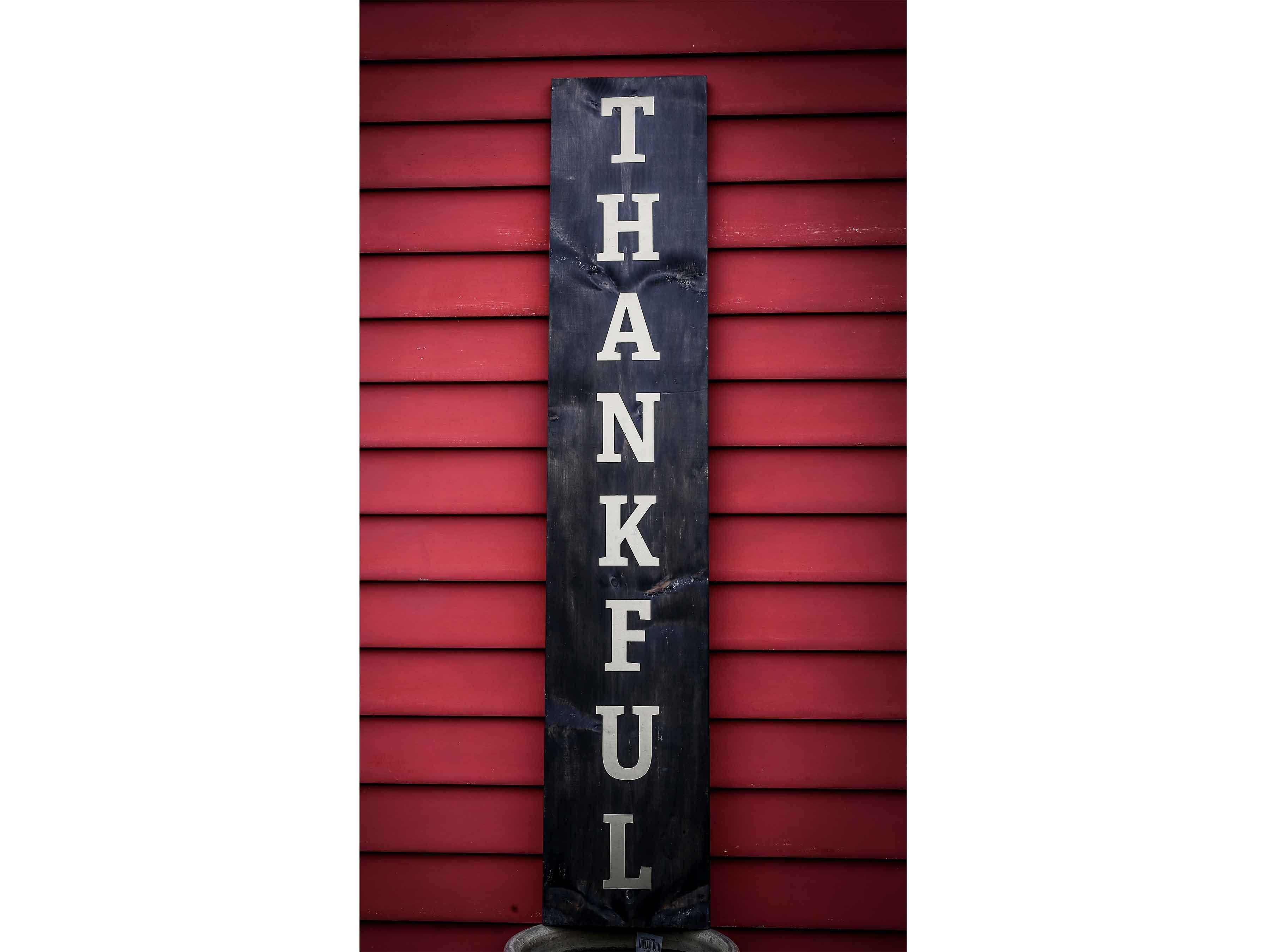 Thankful, 11×60